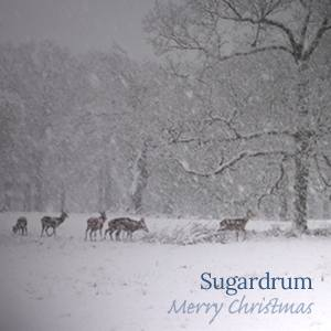 Merry Christmas gig by Sugardrum on Bandcamp